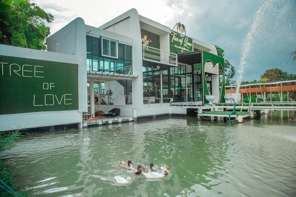 Tree of Love Riverside Cafe ดอนหวาย