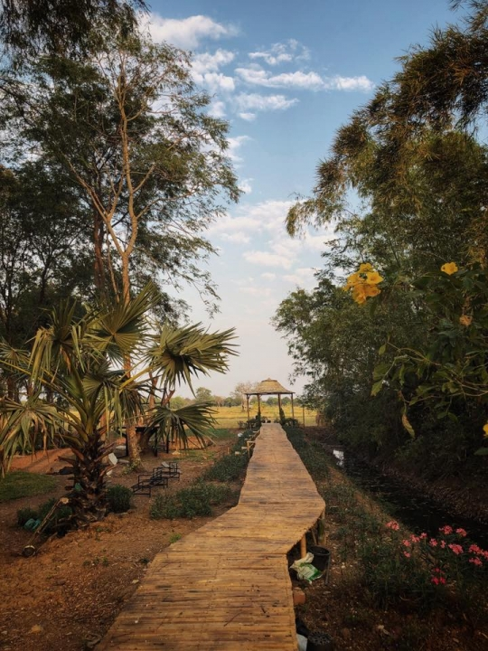 Rice Field Home Farm Stay And Cafe สระบุรี